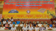 Giải Cờ vua Đại hội TDTT ĐBSCL lần thứ VIII năm 2020
