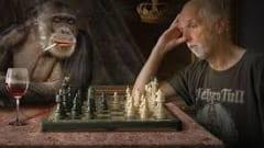Đọc sách cờ vua hay giúp bạn: Rethinking the chess pieces (cuốn 5)